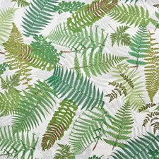 Ivory/amp/Leaf Wallcovering by Schumacher