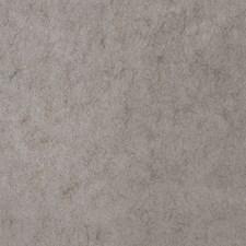 5305405 50009W Joyous Zinc 05 by Fabricut