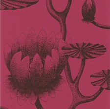 Onyx/Merlot Wallcovering by Cole & Son Wallpaper