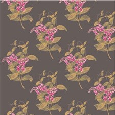 Fuchsia Wallcovering by Cole & Son Wallpaper