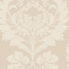 Creme Wallcovering by Cole & Son Wallpaper