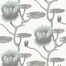 Aqua/White Wallcovering by Cole & Son Wallpaper
