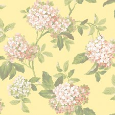 Soft Yellow/Peach Flowers Wallcovering by York