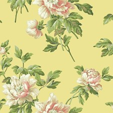 Buttercup Yellow/Mango/Peach Floral Wallcovering by York