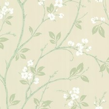 Mint Trail Wallcovering by Brewster