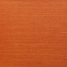 6863-37 Sisal Orange NC12 by Clarence House