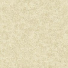 Light Gold/Tan Textures Wallcovering by York