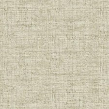 CY1556 Papyrus Weave by York