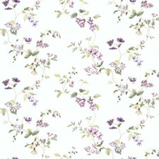 Purple/Green Wall Decor Wallcovering by York