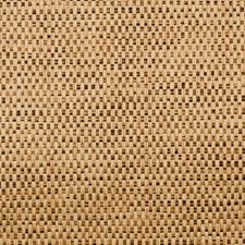 Indian Corn Wallcovering by Groundworks