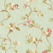 Aqua/Coral/Peach Floral Wallcovering by York