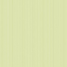 Palest Yellow/Green/Yellow Green Stripes Wallcovering by York
