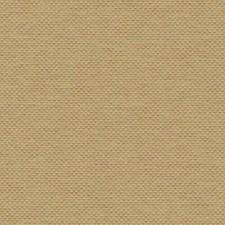 HW3623 Salish Weave by York