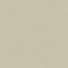 Silver/Cream Solids Wallcovering by York