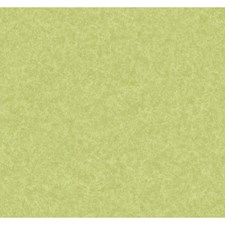 Light Yellow/Green/Medium Yellow Textures Wallcovering by York