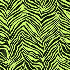 Pistachio/Licorice Animal Skins Wallcovering by York