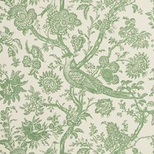 Aloe Toile Wallcovering by Brunschwig & Fils