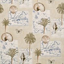 Blue/Coral Wallcovering by Baker Lifestyle Wallpaper