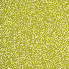 Lime/Silver Wallcovering by Baker Lifestyle Wallpaper