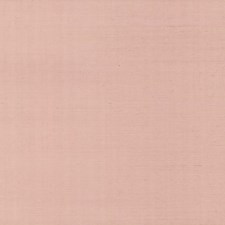 RI5183 Palette by York