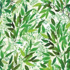 RMK11738RL Watercolor Leaves by York