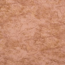 Salmon/Tan/Deep Brown Architectural Wallcovering by York