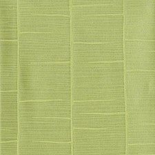 Yellow/Green Tropical Wallcovering by York