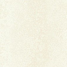 Cream/Beige Pearl Botanical Wallcovering by York