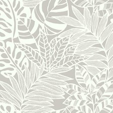 SS2574 Jungle Leaves by York