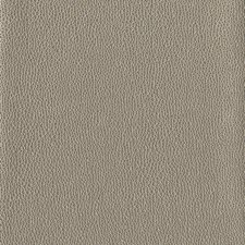 Gold/Beige Textures Wallcovering by York
