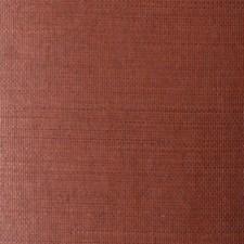TR269 Grasscloth by Winfield Thybony