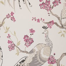 Charcoal Birds Wallcovering by Clarke & Clarke
