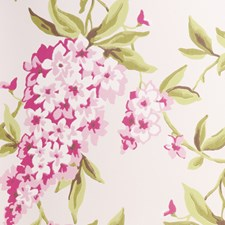 Pink Floral Large Wallcovering by Clarke & Clarke