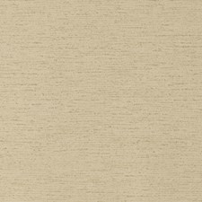 Olive Solid Wallcovering by Clarke & Clarke