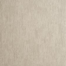Taupe Solid W Wallcovering by Clarke & Clarke