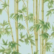 Light Blue/Green/Light Green Wallcovering by Kravet Wallpaper