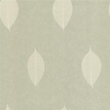 Green/White Botanical Wallcovering by Kravet Wallpaper