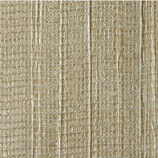 Tahitian Gold Solid Wallcovering by Winfield Thybony
