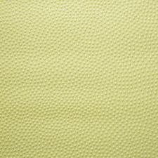 Jaune Wallcovering by Scalamandre Wallpaper