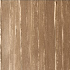Mocassin Solid Wallcovering by Winfield Thybony