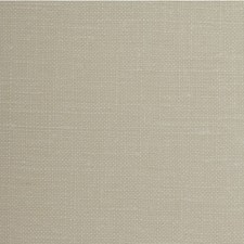Cr?Me Brulee Solid Wallcovering by Winfield Thybony