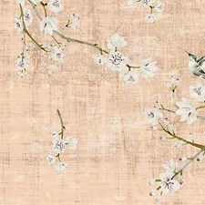 Romance Wallcovering by Scalamandre Wallpaper