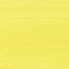 Citron Wallcovering by Scalamandre Wallpaper