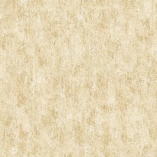 White/Gold Novelty Wallcovering by York