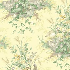 Sunlit Wallcovering by Scalamandre Wallpaper