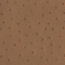 Cigar Wallcovering by Scalamandre Wallpaper
