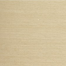 French Horn Solid Wallcovering by Winfield Thybony