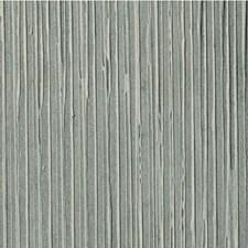 Caspian Solid Wallcovering by Winfield Thybony