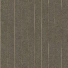 Y6201006 Elemental Stripe by York